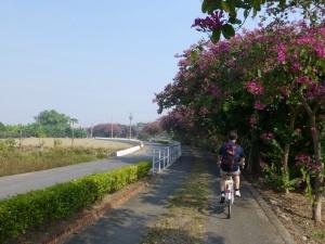 Cycling in Hoebi