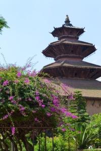 Patan Museum's courtyard